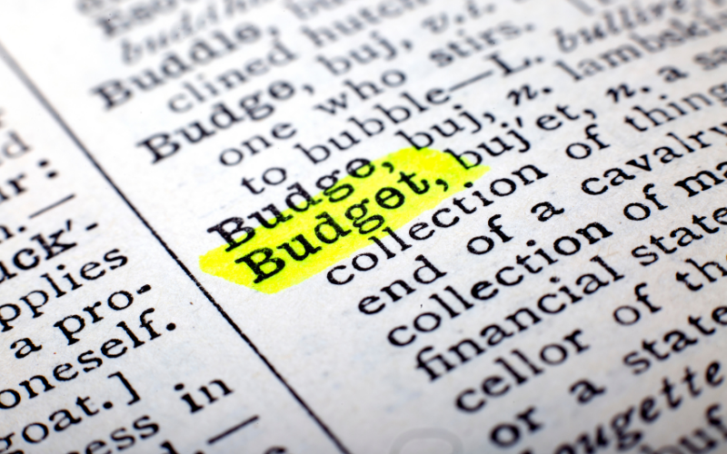 Blog - How Can a Small Business Budget For Variable Expenses